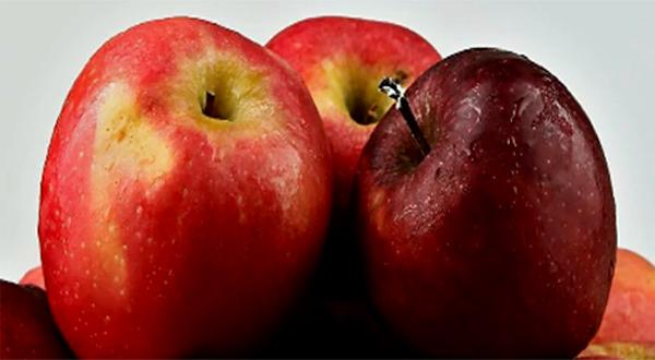 Los alimentos que ayudan a regular la digestión 2