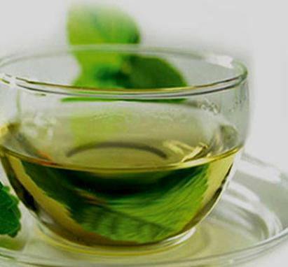 Plantas medicinales que actúan contra la gastroenteritis 1
