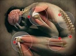 descubre-que-es-bueno-para-la-osteoartritis