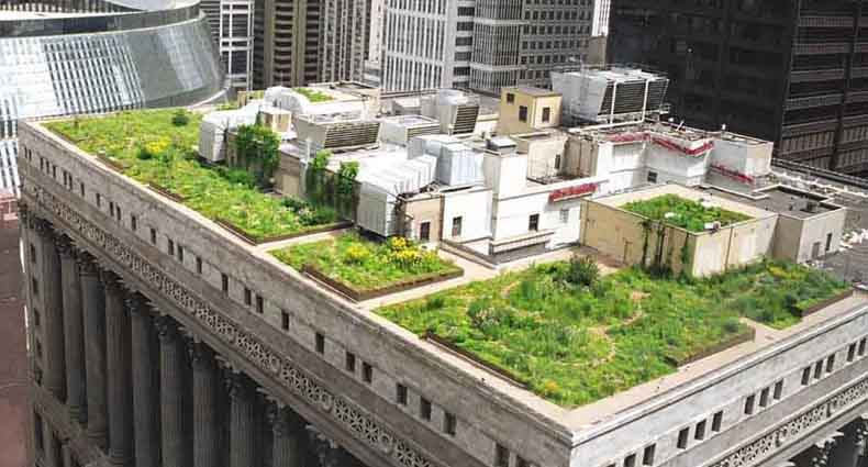 en que consiste la instalación de muros y techos verdes