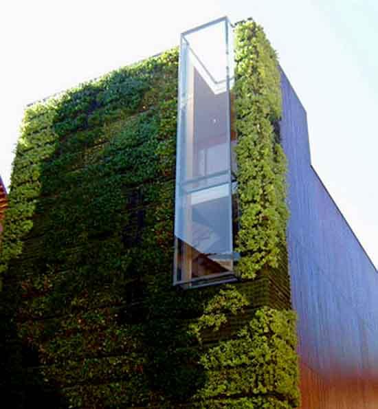 en que consiste la instalación de techos y muros verdes